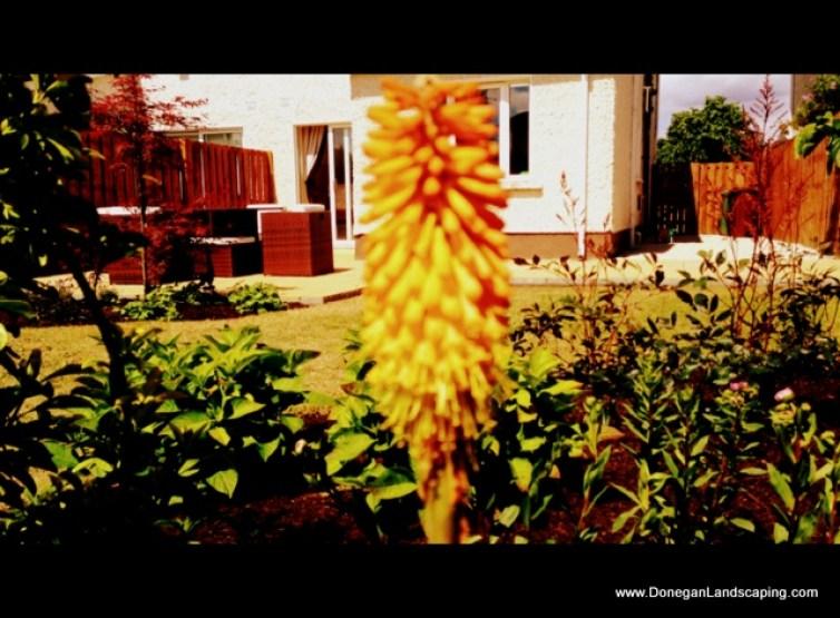 back garden landscaping