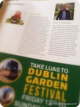 dublin garden festival, christ church (3)