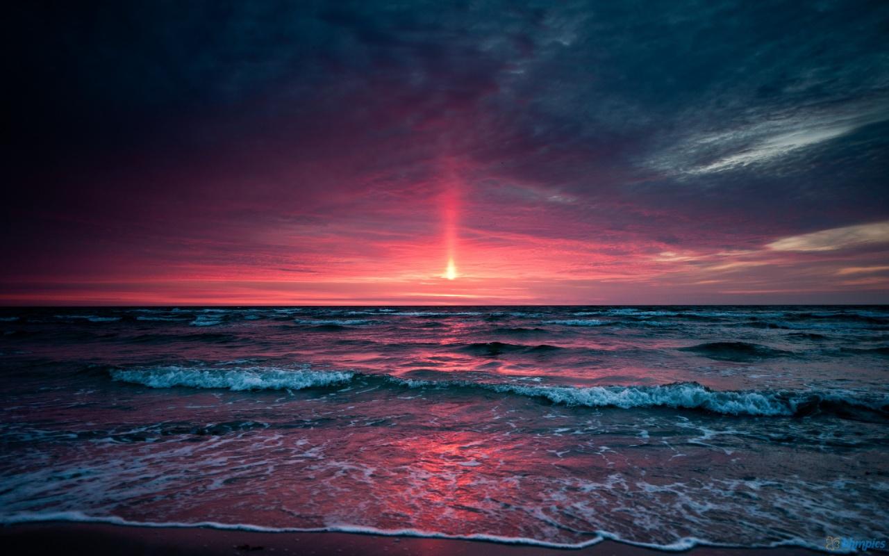 Beautiful beach sunset birds beach sunset