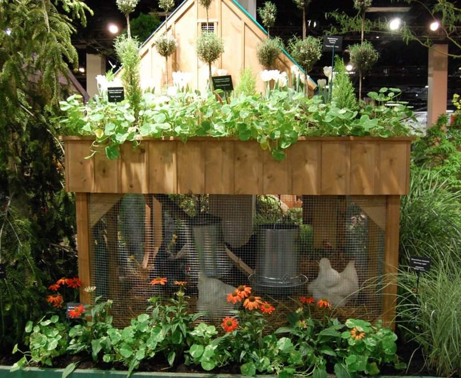 37 Chicken Roosting Ideas For Your Chicken Coop