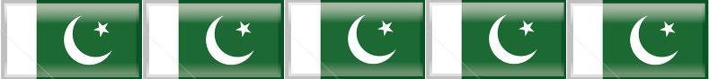 Pakistani Flag Collection