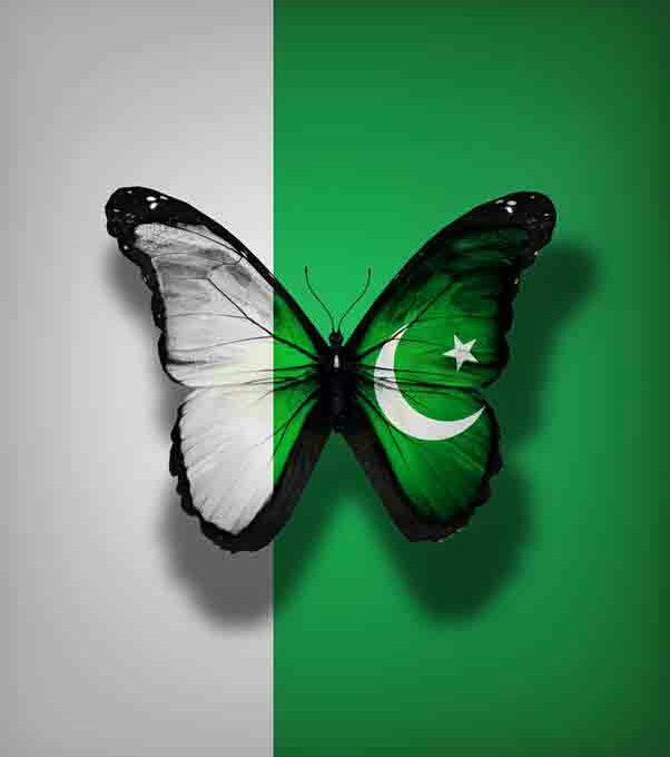 Indian Flag Full Hd Wallpaper Beautiful Pakistan Flag Images Pictures Download