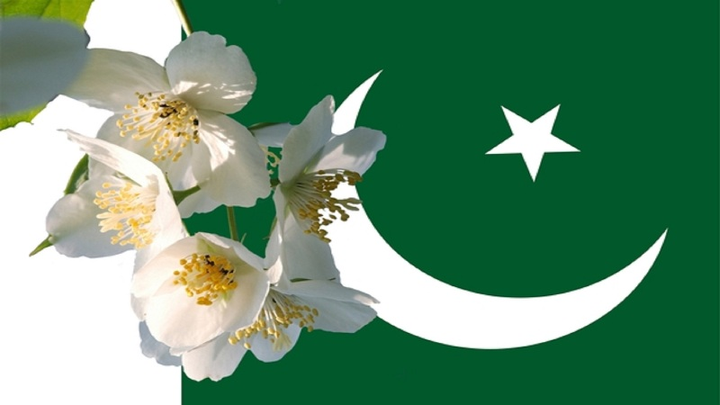 new pakistani flag pictures