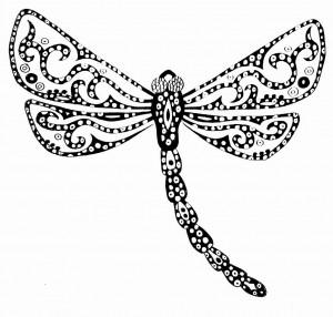 dragonfly+(1)
