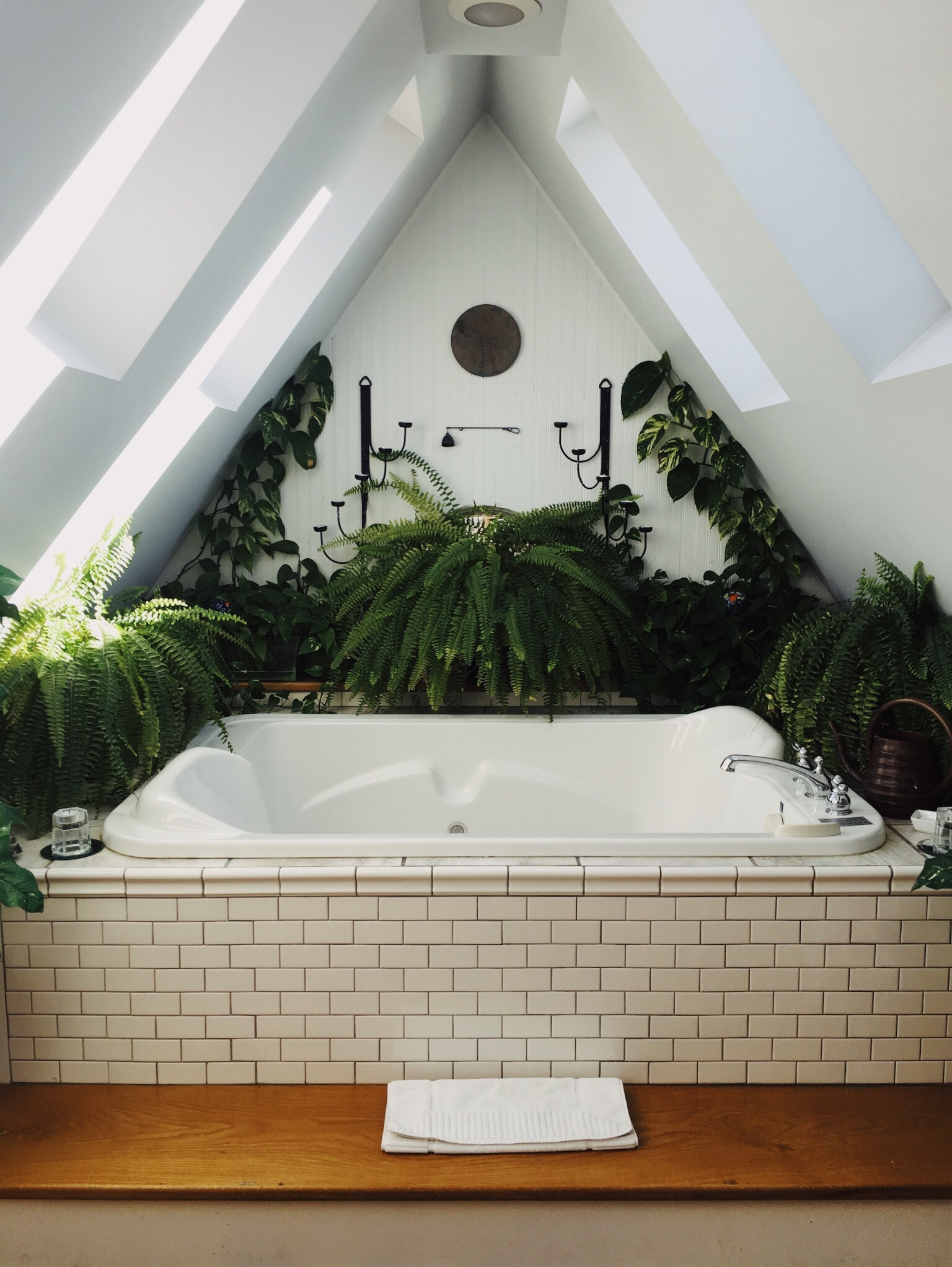 Soak Badkamer What Plants Can Survive In A Bathroom Doors More