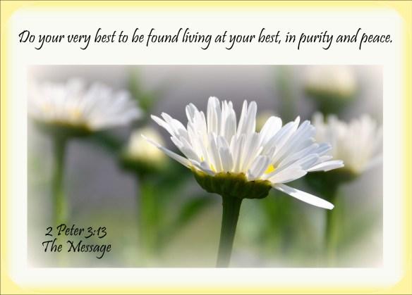 2 Peter 3-13