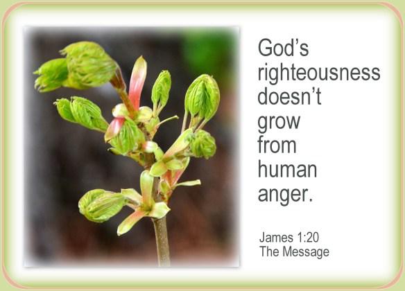 James 1-20