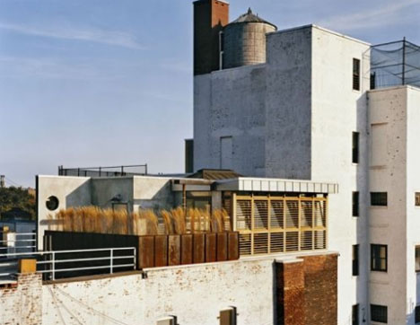 Urban Oasis Rustic Modern Rooftop Garden Deck Design