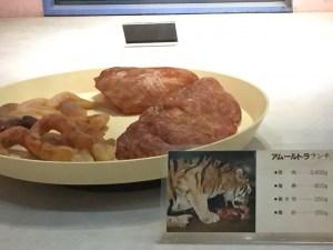 王子動物園のトラ