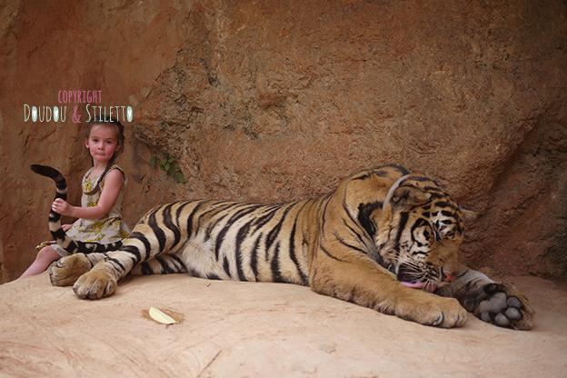 Temple tigres