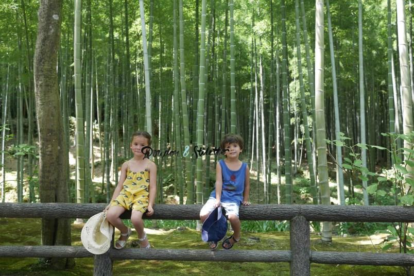 Bambouseraie Arashiyama