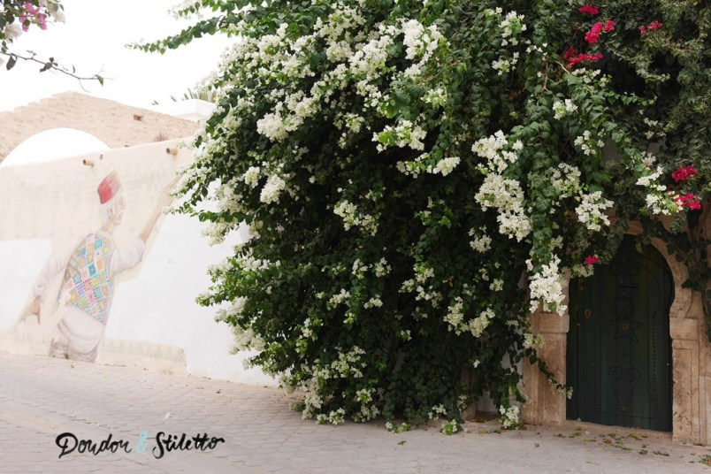 Elrriadh, Djerbahood