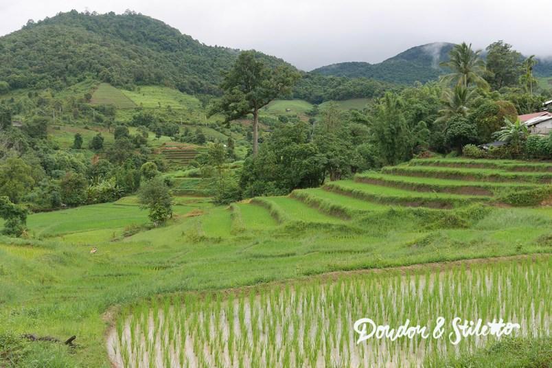 Evasion Karen Chiang Mai8
