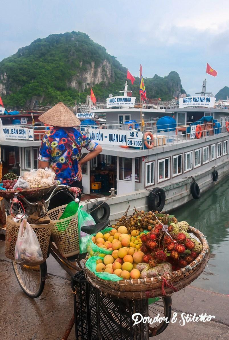 Bai Tu Long14