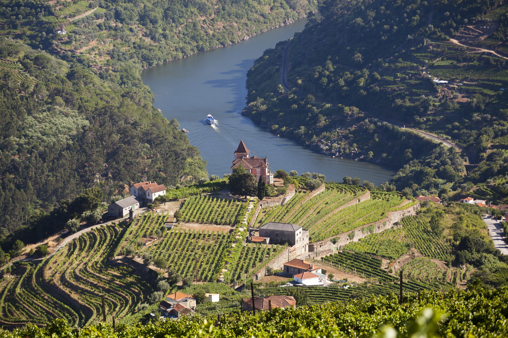Valley Tours Boat Tour To Regua Through The Douro Valley With Breakfast