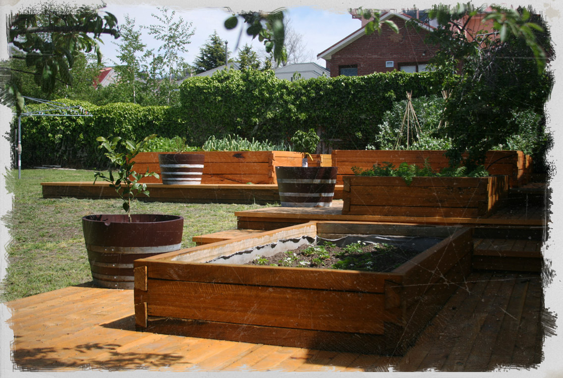 Using Railway Sleepers For Raised Vegetable Beds Dovetail Timbers Raised Timber Garden Beds Dovetail Timbers