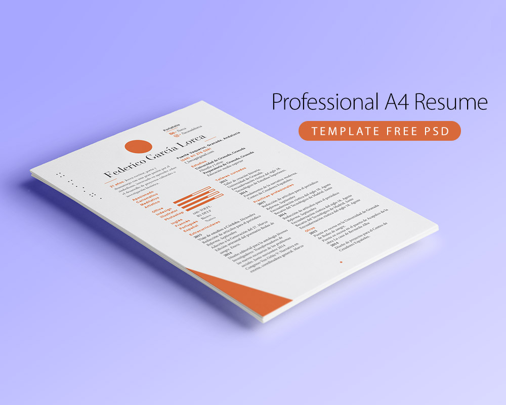 Free Professional Resume Template. Examples Of House Cleaning Flyers