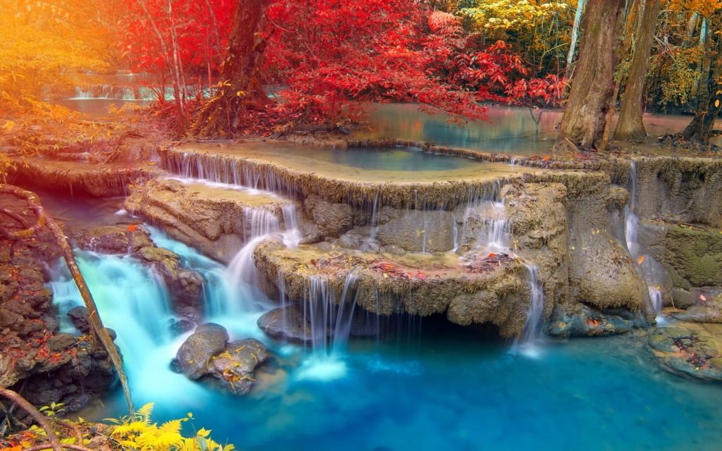American Wallpaper Fall River Fond D 233 Cran Tropical