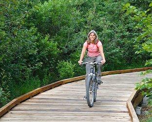 Boardwalk Bikeriding