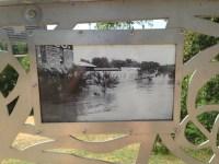 art-in-public-spaces-lady-bird-lake-12