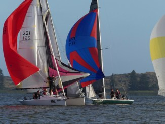 Spinnakers were in full colour at Goolwa tonight. Photos: Chris Caffin