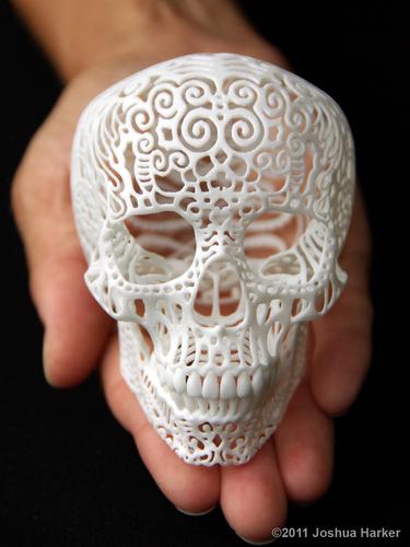 Crania Anatomica Filigre (small) 80009