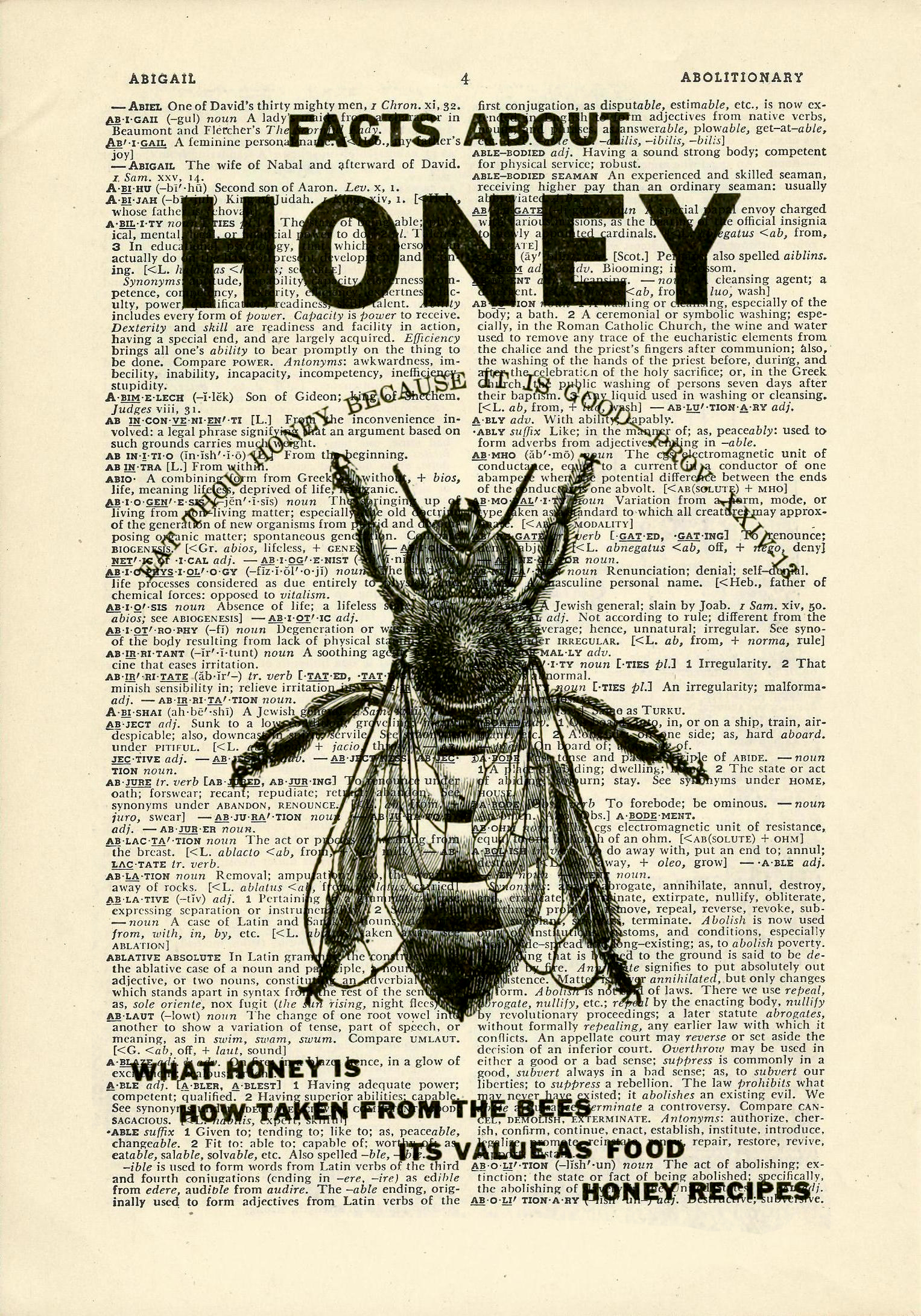 Honey Betekenis Honey Bee Dictionary Art Vintage Flying Insects On