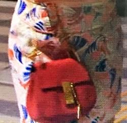赤いミニバッグ