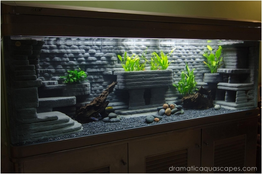 Dramatic AquaScapes   DIY Aquarium Background   Bob Kyaw in the