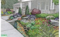 Garden Drawing Details | DrawnToGarden