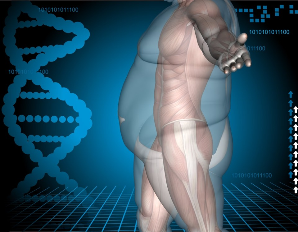 Concept or conceptual 3D fat overweight vs slim fit diet with muscles young man blue gradient backgr