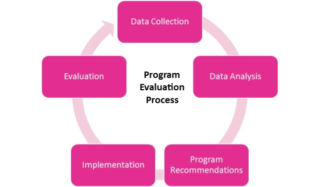 Program Evaluation Process