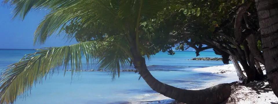 Saona Island, Dominican Republic – Transat Holidays Motorboat/Catamaran Excursion