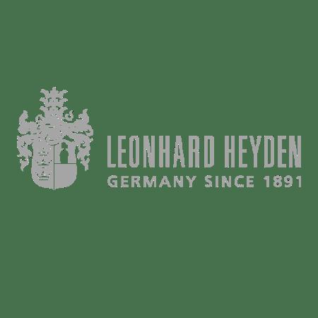 logo_heiden