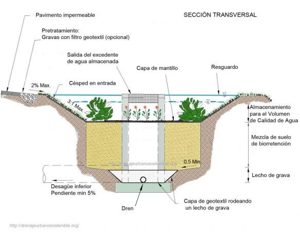 seccion-transversal