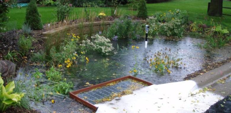 Jardines de lluvia-8