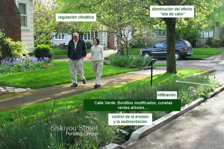 calle-verde