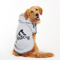 Dog Clothes For Labradors | Dress The Dog - clothes for ...