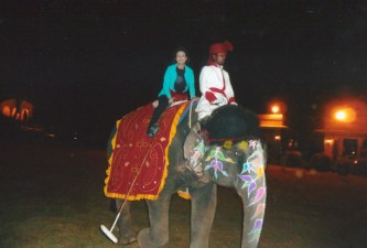 Dr. Gross in India playing Elephant Polo