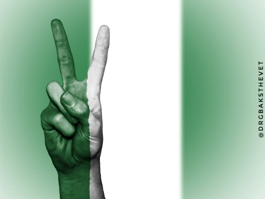 A hand showing the peace sign coloured in Nigerian's national colours