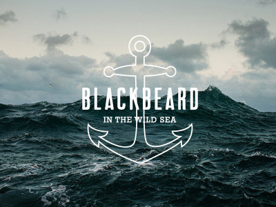 blackbeard   wild sea 16 Beautiful Examples of Anchor Logos