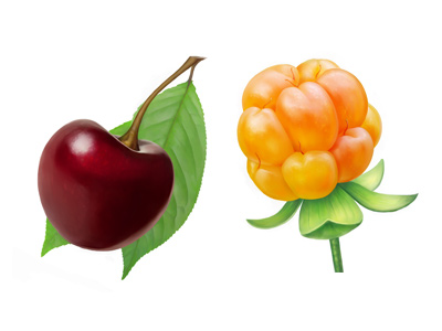 denfo dribbble 001 25 Gorgeous 3D Fruit & Vegetable Illustrations