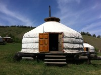 Mongolian Ger Camp: Flora