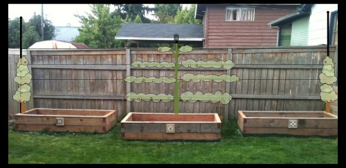 Medium Of Veggie Garden Planters