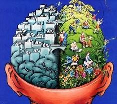 Neuroeducaçao