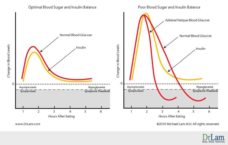 Revealing Connections Between Hypoglycemia Symptoms And Adrenal Fatigue - how to graph blood pressure over time