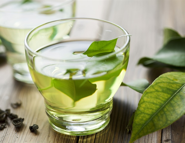 Research Shows that Green Tea Enhances Memory