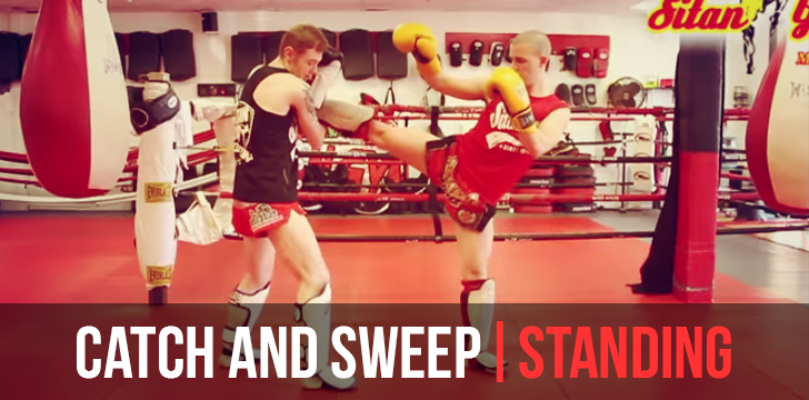 CATCH AND SWEEP COUNTER | STANDING