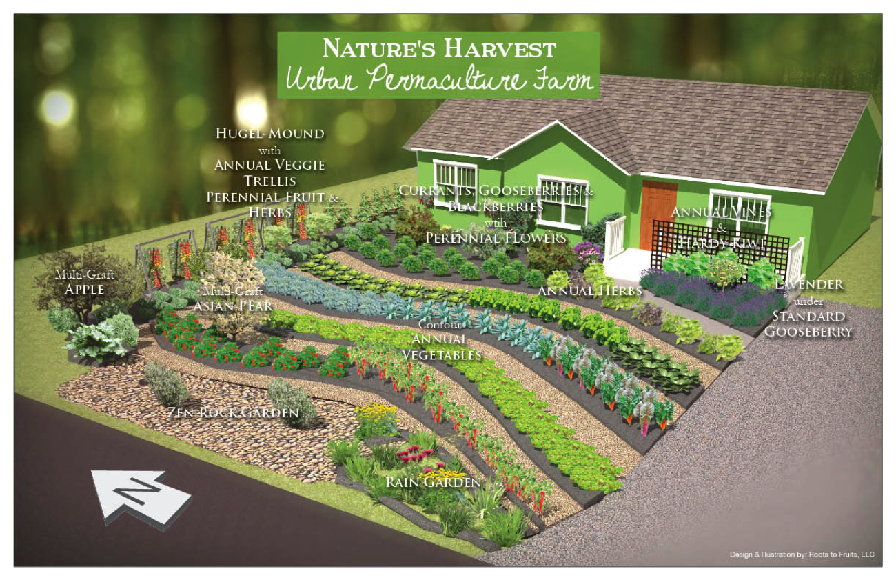 The Power of Permaculture: Regenerating Landscapes and
