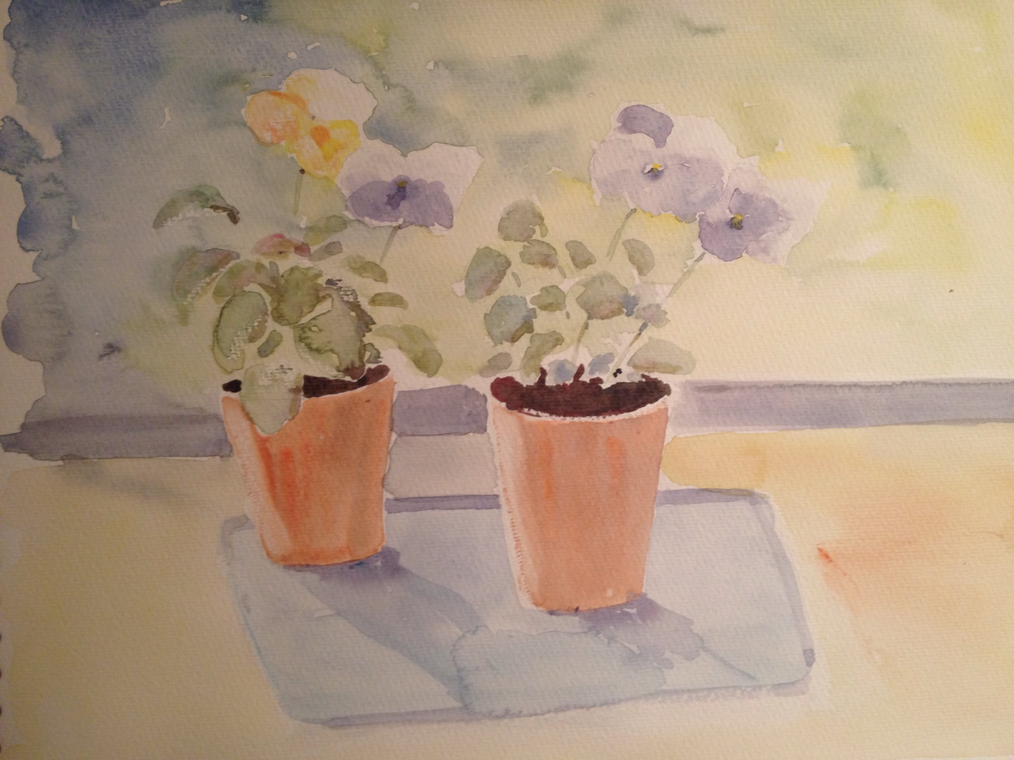 Pittura Viole Pittura Dr Watercolor